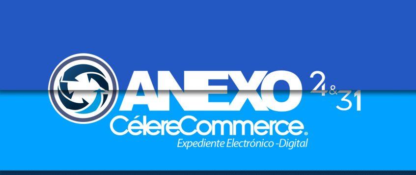 anexo24y commerce